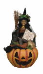 "HASC-03 ""Edith"" Witch on Lighted Fiber Optic Pumpkin"